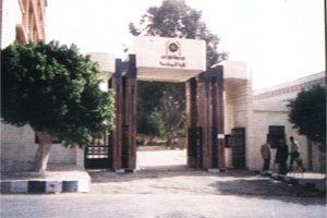Vision of the Faculty